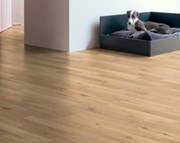 Quick-Step Classic Sound 8mm Laminate