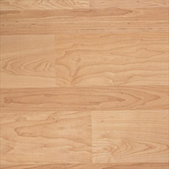 Tarkett Solutions:  Sugar Maple 8mm Laminate 100112