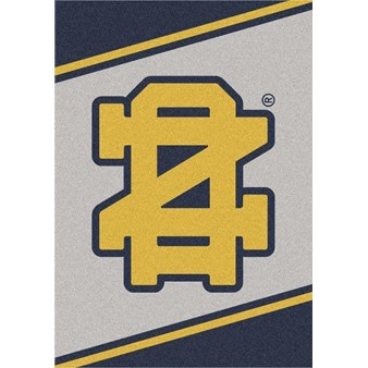 "Milliken College Team Spirit (NCAA-SPT) Notre Dame 45881 Spirit Rectangle (4000054406) 5'4"" x 7'8"" Area Rug"