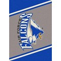 Milliken College Team Spirit (NCAA) Air Force 68870 Spirit Rectangle (4000019306) 7