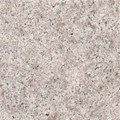"MS International Granite: Almond Mauve 12"" x 12"" Granite Tile TCALMONMAU1212"