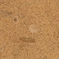 USFloors Natural Cork EcoCork:  Rio High Density Cork 40P3210