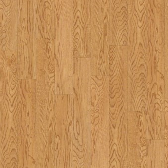 Shaw Floorte Classico: Alba Luxury Enhanced Vinyl Plank 0426V 208