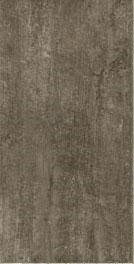 Armstrong Alterna Enchanted Forest Luxury Vinyl Tile D7198