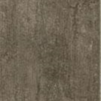Armstrong Alterna Enchanted Forest: Tender Twig Luxury Vinyl Tile D7198