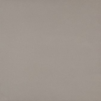 "Daltile Exhibition Cement: Trend Grey 12"" x 24"" Porcelain Tile EX0312241P"