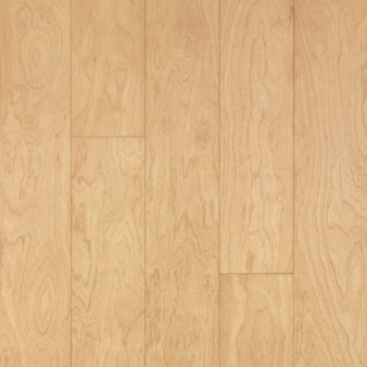 "Bruce Turlington American Exotics Birch: Natural 3/8"" x 5"" Engineered Birch Hardwood E3600"