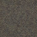 "Shaw Swizzle: Hopscotch 24"" x 24"" Carpet Tile 54440 40500"