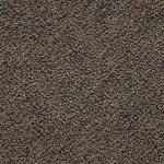 "Shaw Swizzle: Dominos 24"" x 24"" Carpet Tile 54440 40701"