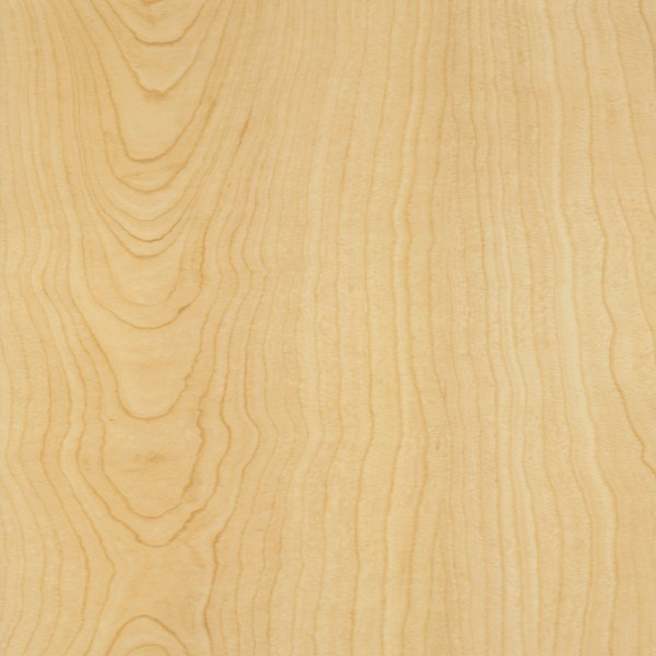 Earthwerks Rapture Plank Luxury Vinyl Tile Srp 713