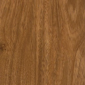Armstrong Natural Living: Brazilian Forest Vinyl Plank D2422
