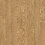 Shaw Array Sumter Plus Plank: Dutch Luxury Vinyl Plank 0025V 220