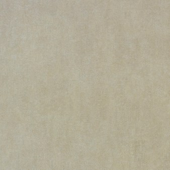 Mannington Nature's Path LockSolid Rainfall Tile: Clearing Luxury Vinyl Tile 12302S