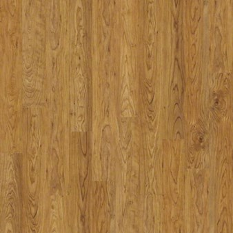 Shaw Salvador: Shaker Cherry 8mm Laminate SL078 154