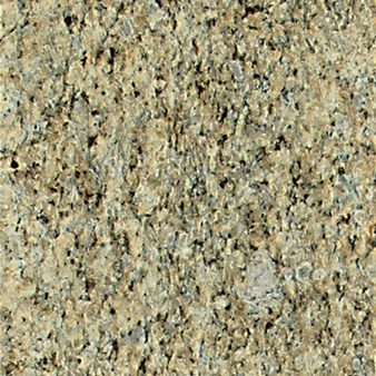 "Daltile Granite: Giallo Ornamental Polished 12"" x 12"" Natural Stone Tile G331-12121L"