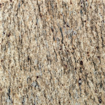 "Daltile Granite: Santa Cecilia Polished 12"" x 12"" Natural Stone Tile G287-12121L"