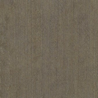 Mannington Nature's Paths Select Tile Collection: Parallels Beach Grass Luxury Vinyl Tile 12205
