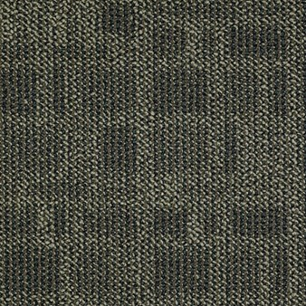 "Shaw Area: Green Acres 24"" x 24"" Carpet Tile 54436 00300"