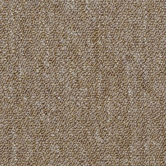 "Shaw Capital III: Majority 24"" x 24"" Carpet Tile 54480 80201"