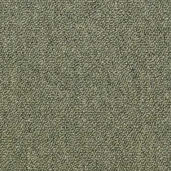 "Shaw Capital III: Distinguished 24"" x 24"" Carpet Tile 54480 80301"